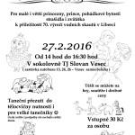 Zvadlo_maskarni_2016_02_27